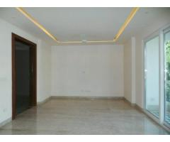 1 Bhk fully furnished Flat For Rent Model Colony 9767930804